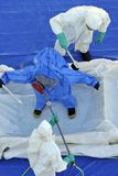 Hazmat crew. Hazmat technicians scrub down hazmat worker Royalty Free Stock Photography