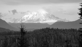 Hazy Atmospheric Conditions National Forest Mt Rainier Royalty Free Stock Photography