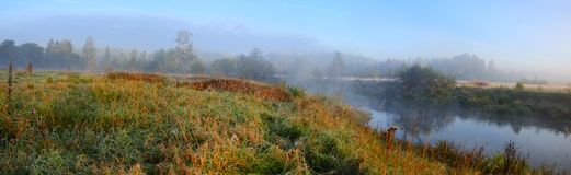 Foggy autumn panorama of meadow and small forest river stock images