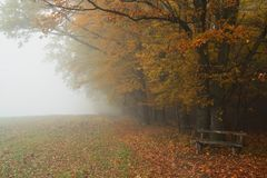 Hazy autumnal fall landscape -.  Royalty Free Stock Photography
