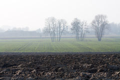 Hazy countryside. With ground and young field Stock Photography