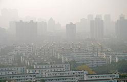 Hazy and crowded City. Crowded residential buildings of a hazy City Royalty Free Stock Photography