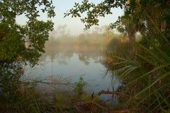 Hazy Morning. A hazy morning in Punta Gorda Florida royalty free stock images