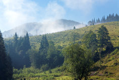 Hazy morning in mountain Stock Photography