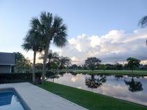 Hazy morning sunrise on a tropical island. Palm trees reflecting in the lake at sunrise Stock Photos