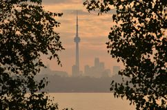 Hazy morning Toronto skyline framed by tree foliage Stock Image