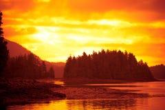 Hazy Sunset. Hazy orange sunset behind the trees Royalty Free Stock Photography