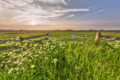 Hazy sunset over fence in dutch polder Stock Photo