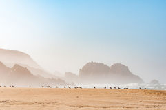 Hazy view of rocks in the sea Royalty Free Stock Photos