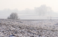 Hazy winter landscape. Rural hazy and calm winter landscape with plowed field. Focus on field Royalty Free Stock Images
