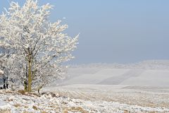 Hazy winter landscape Royalty Free Stock Image