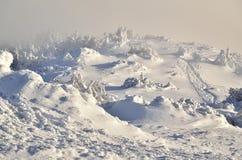 Hazy winter landscape Royalty Free Stock Photo