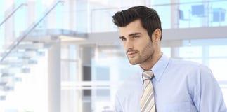 Hübscher junger Geschäftsmann im Büro Stockbilder