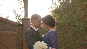 HD холят и стойки и объятия невесты предпосылка солнечная сток-видео