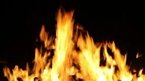 HD 1080, bristning av flammor stock video