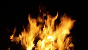HD 1080,Burst of flames stock video