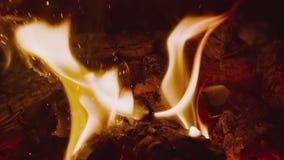 HD-Feuer auf schwarzem Hintergrund stock video