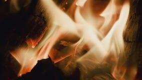 HD-Feuer auf schwarzem Hintergrund stock video footage