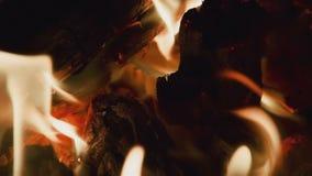 HD-Feuer auf schwarzem Hintergrund stock footage