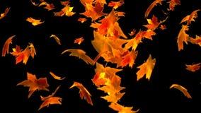 HD Loopable tło z ładnymi spada liśćmi zbiory