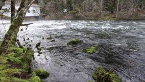 Верхнее видео реки HD McKenzie сток-видео