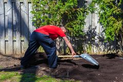 Man with red shirt is using a shovel to scatter black soil around stock image