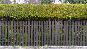 HD seamless pattern garden fence Stock Images