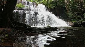 HD Tropical Waterfall in forrest. HD Tropical big waterfall in forrest stock video footage