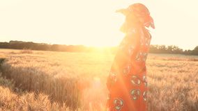 African woman in traditional clothes standing in a field of crops at sunset or sunrise. HD Video clip of African woman in traditional clothes standing in a field stock video
