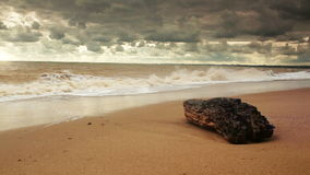 HD Video:  Wild shore after strong Storm Royalty Free Stock Photos