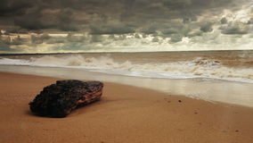 HD Video:  Wild shore after strong Storm Royalty Free Stock Photo