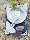 HDD on ground Royalty Free Stock Image