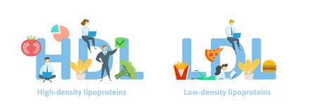 HDL and LDL banner ideas. Concept with keywords, letters, food, and icons. Flat vector illustration. Isolated on white stock illustration