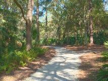 HDR ścieżka przez John kasztanu parka w Floryda 2 zdjęcia stock