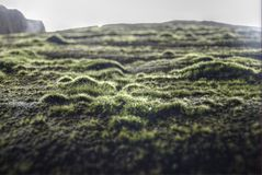 hdr βράχος βρύου Στοκ Εικόνες