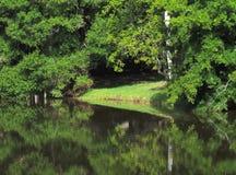 HDR-Bezinningen van bomen op een meerkust Stock Foto's