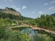 HDR of Black Hills Stock Photography