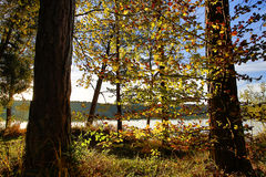 HDR capture of an autumnal landscape in Bavaria Royalty Free Stock Photos