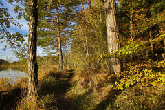 HDR capture of an autumnal landscape in Bavaria Stock Photography