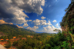 HDR colorful forest  mountain cloud sky Royalty Free Stock Photo