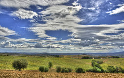 Hdr countryside Royalty Free Stock Photo