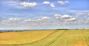 HDR of Dunstable Downs. An HDR Image of Dunstable Downs Stock Photo