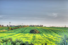 Hdr field Royalty Free Stock Photography