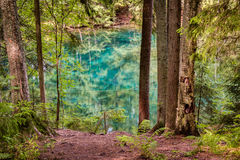 HDR foto av en ultra klar vårsjö i en nordisk skog arkivbild
