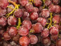 HDR-Fotobeeld van rode druiven Stock Fotografie