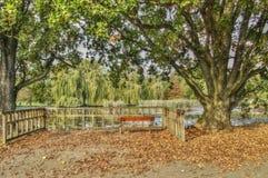 HDR fotografii pusta ławka w Stromovka parku w jesieni, Praga Zdjęcia Stock