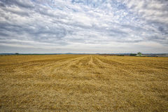 HDR of an harvested field Stock Images