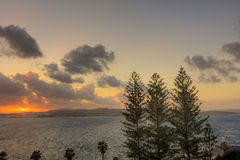 HDR image of a sunset on the horizon behind three trees and a sea Stock Images