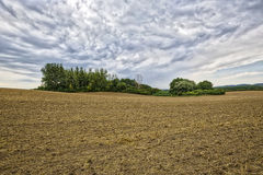 HDR landscape with arable land. Forest and cloudscape Stock Photo