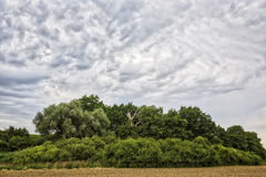 HDR landscape with arable land. Forest and cloudscape Royalty Free Stock Photography